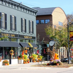 Saugatuck/Douglas Area Business Association